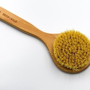 Body Brush With Handles