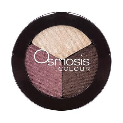 Osmosis Trio Spiced Berry Eyeshadow